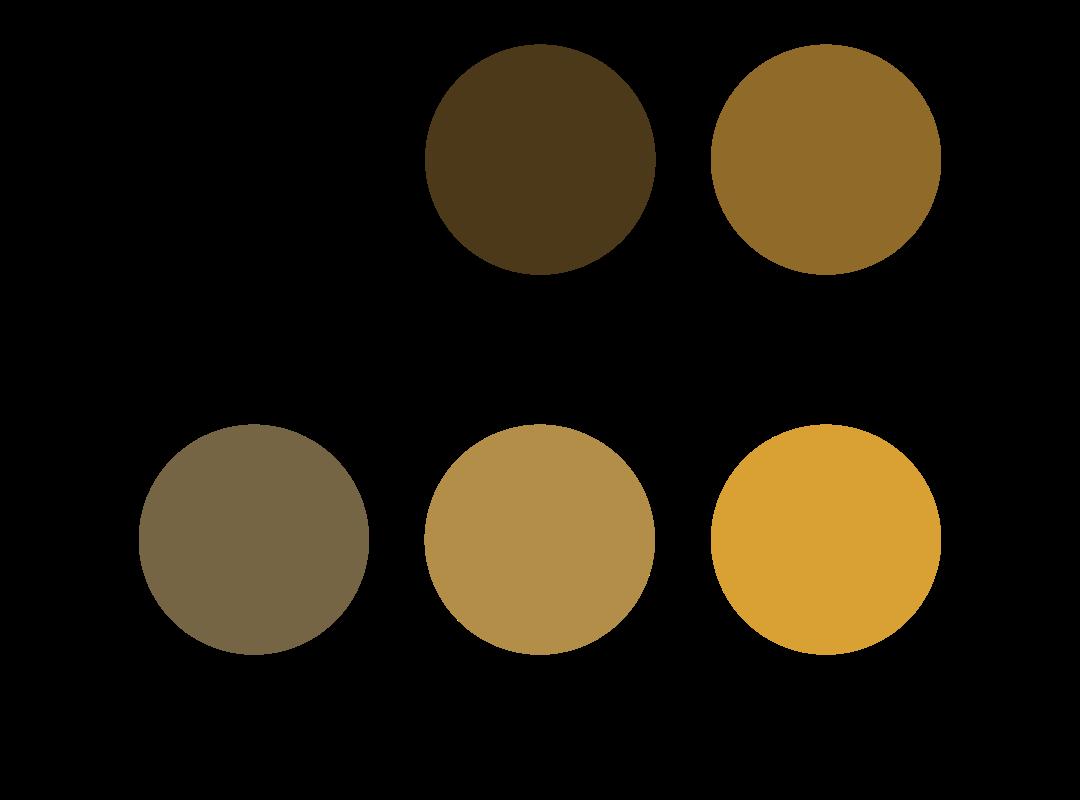 Roghandaaz-Color-Palette